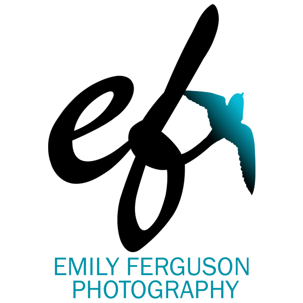 Emily Ferguson Photography